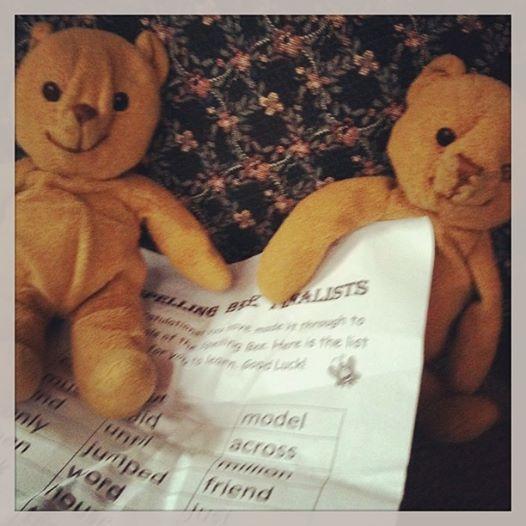 Spelling Bears